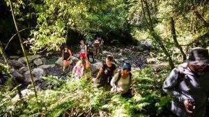 Trekking en las Yungas de Salta