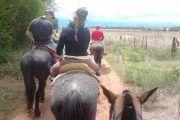 Cabalgata en el campo